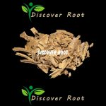 Discover Root Rootbark